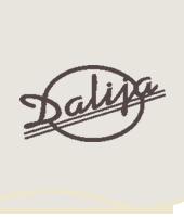"""""""Dalija"""" - viešbutis Druskininkuose"""